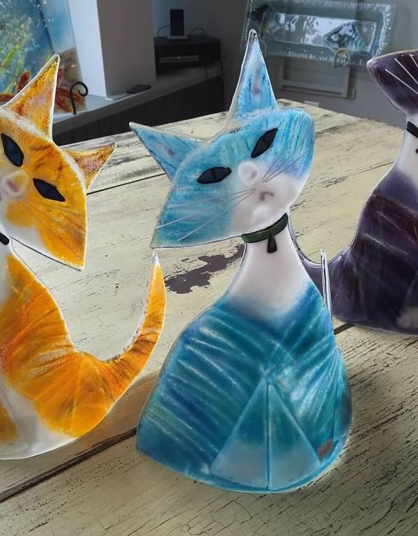 Fish & Cats