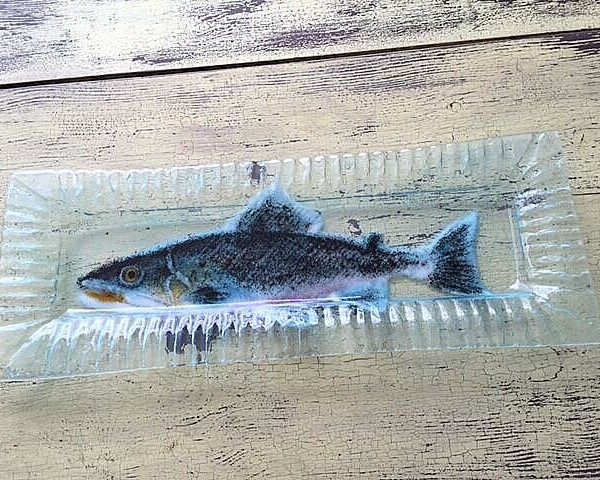 atlantic-salmon-9x24